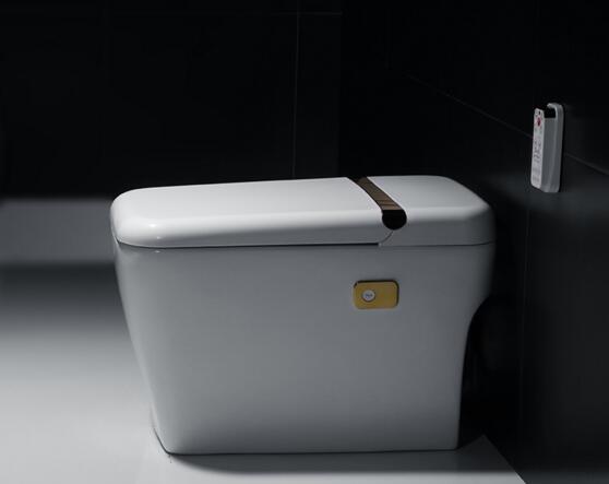 无水箱马桶尺寸功能设计